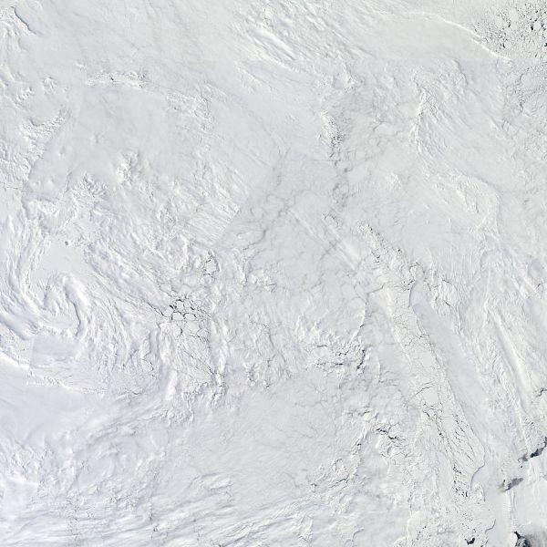 Arctic_r04c04.2013150.terra.1km