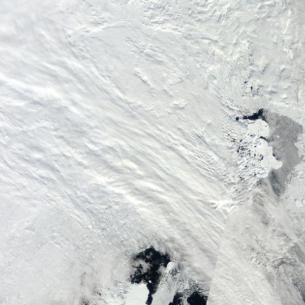 Arctic_r03c04.2013155.terra.1km