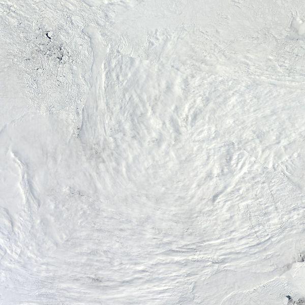 Arctic_r04c04.2013158.terra.1kmPAS