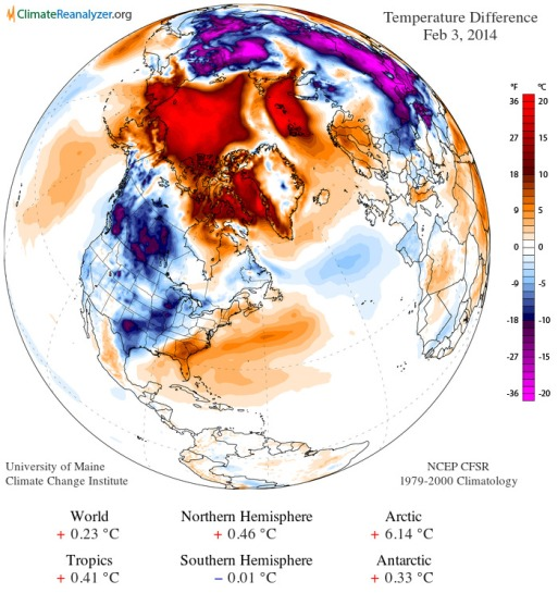 Daily temperature anomaly feb 3