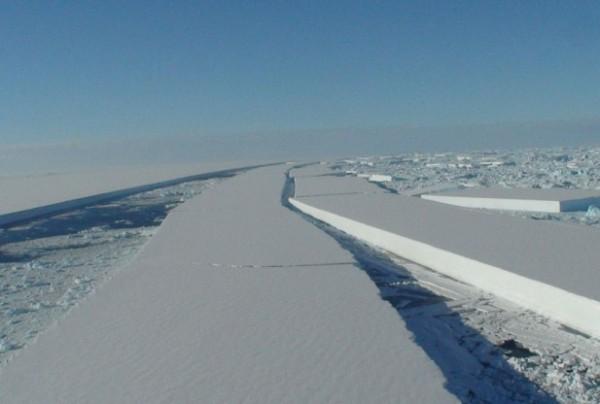 Pine Island Glacier Calves into Amundsen Sea