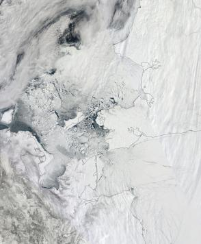Bering and Chukchi Seas April 10