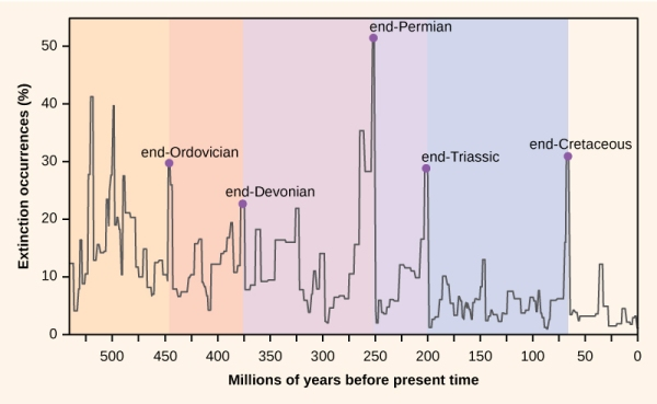 Mass extinction events