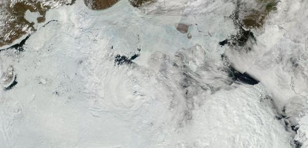 Russian Arctic Ocean sea ice june 25
