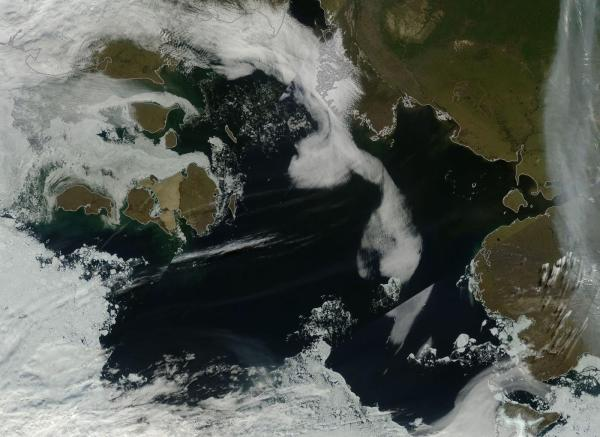 An Ice-Free Laptev Sea