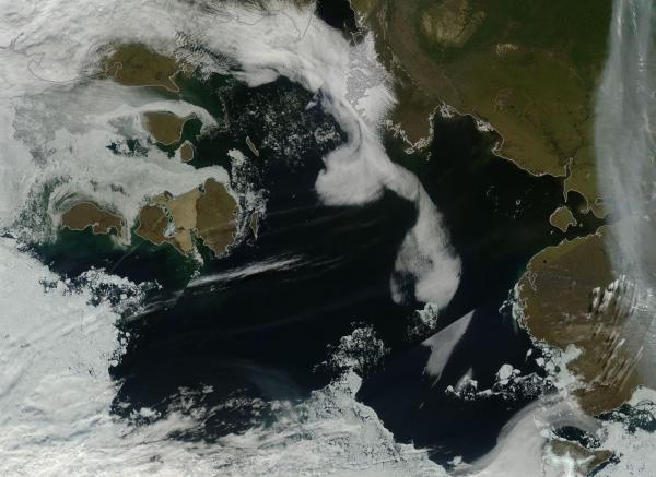 An Ice-Free Laptev Sea