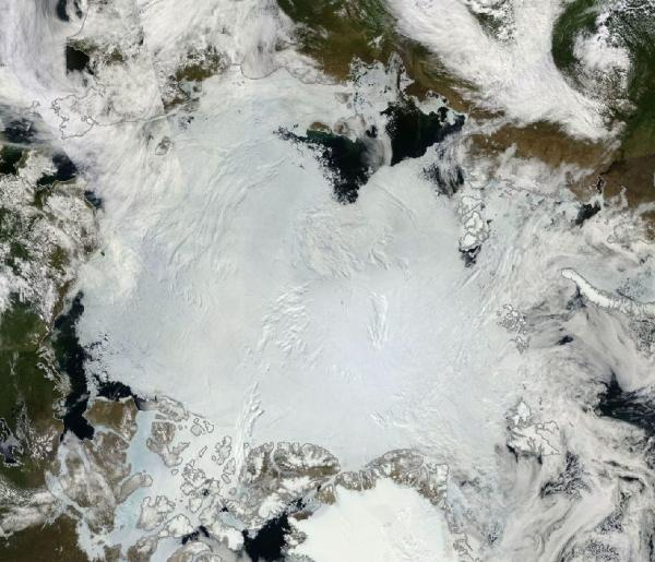 Arctic Sea Ice June 30