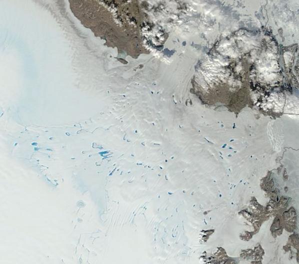 Melt Ponds Zachariae Glacier July 25, 2014