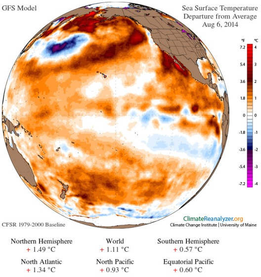 Pacific SST Anomaly August 6