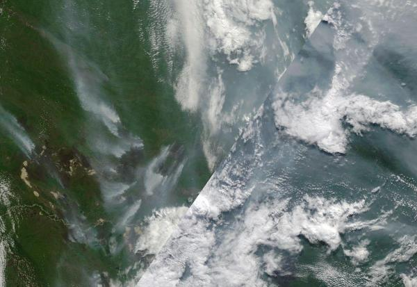 Siberian Wildfires August 6