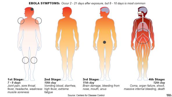Ebola progression