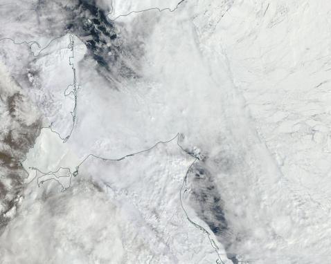 Chukchi melt may 11