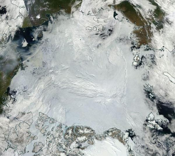 Arctic Ice Pack July 6