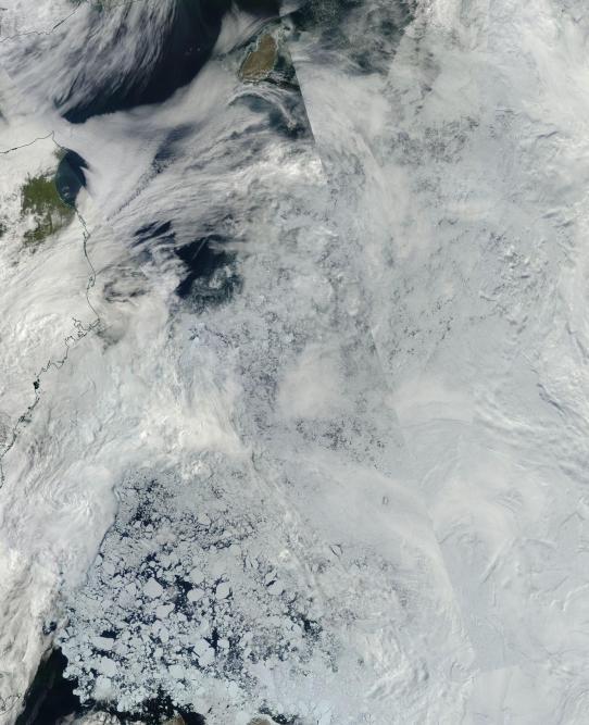 Very weak sea ice