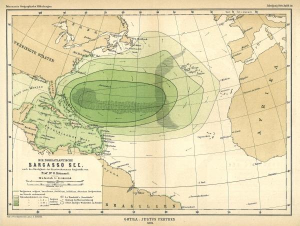 Mapa 1891 de la extensión de la baja y alta concentración de los Sargazos algas