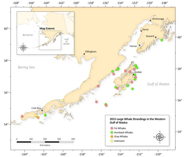 Whale stranding locations