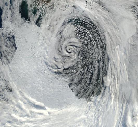 Laptev Storm