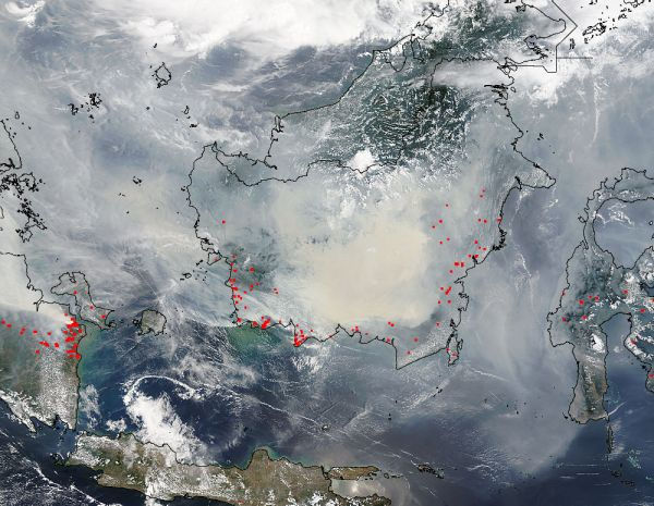 Rapid Response Indonesia Wildfires
