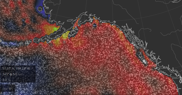 Hot Blob Pacific Northwest