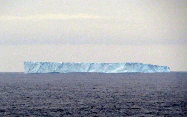 Iceberg spotted off Bonavista in January