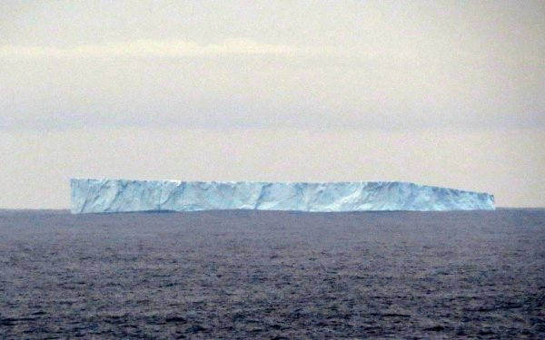 Iceberg spotted off Bonavista in January
