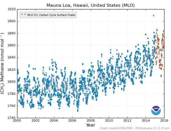 Mauna Loa Methane