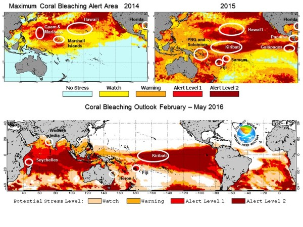 Major Coral Bleaching Event
