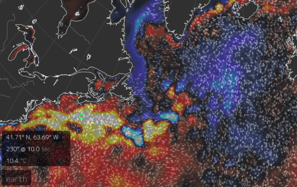 North Atlantic Sea Surface Temperatures