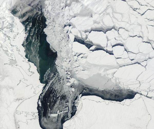 Beaufort Sea Ice Early Melt