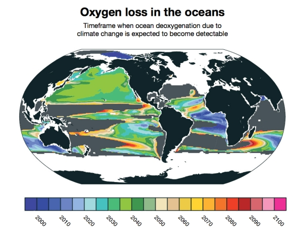Ocean Deoxygenation Map