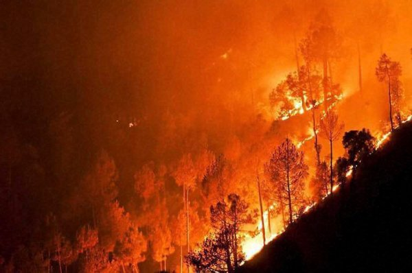 A major fire in the forests at Ahirikot in Srinagar, Uttarakhand state, India, Monday, May 2, 2016. Massive wildfires that have killed at least seven people in recent weeks were burning through pine forests in the mountains of northern India on Monday, including parts of two tiger reserves.(Press Trust of India via AP) INDIA OUT, MANDATORY CREDIT, NO ARCHIVE