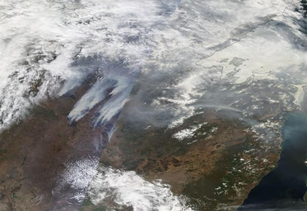 Massive Wildfires Amur Russia