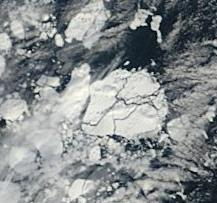 Arctic sea ice june 10 frame 2