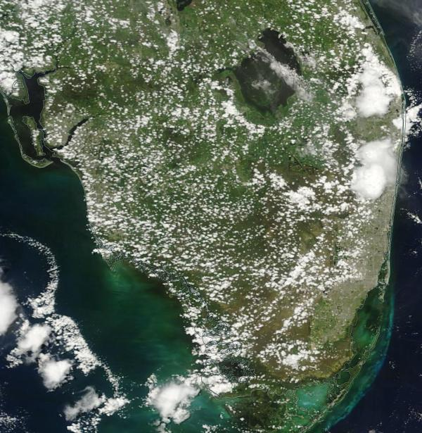 Lake Okeechobee Algae laden waters South Florida late June