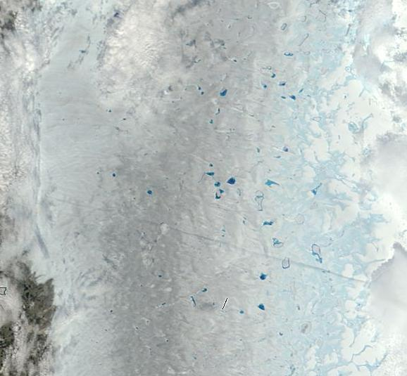 Large Melt Ponds Dark Snow Western Greenland