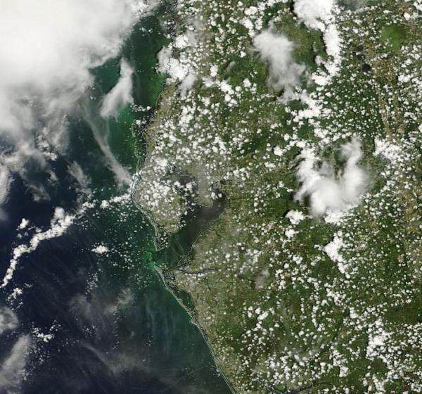 Tampa Bay Florida LANCE MODIS