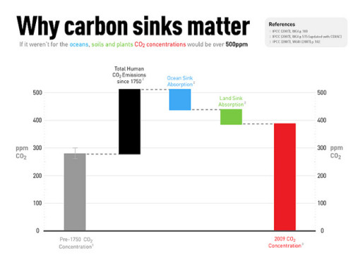carbon sinks