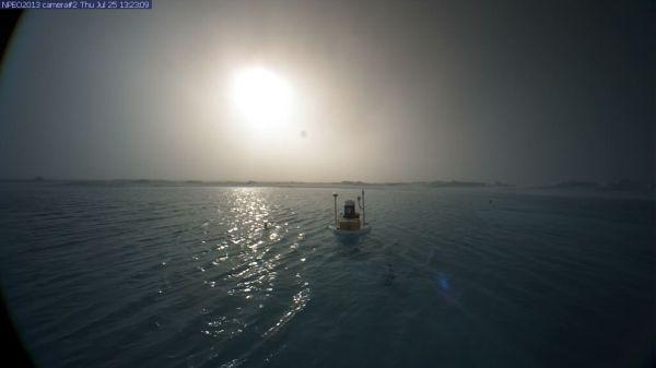 north-pole-camera-2-swims