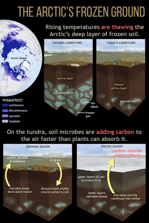 arctic-carbon-sink-to-source