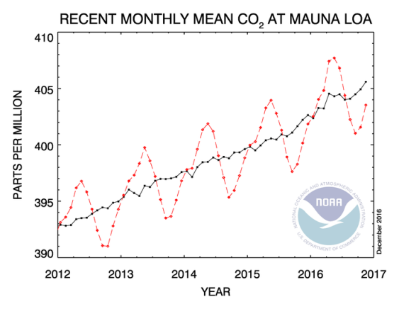 Carbon Dioxide Trend Mauna Loa